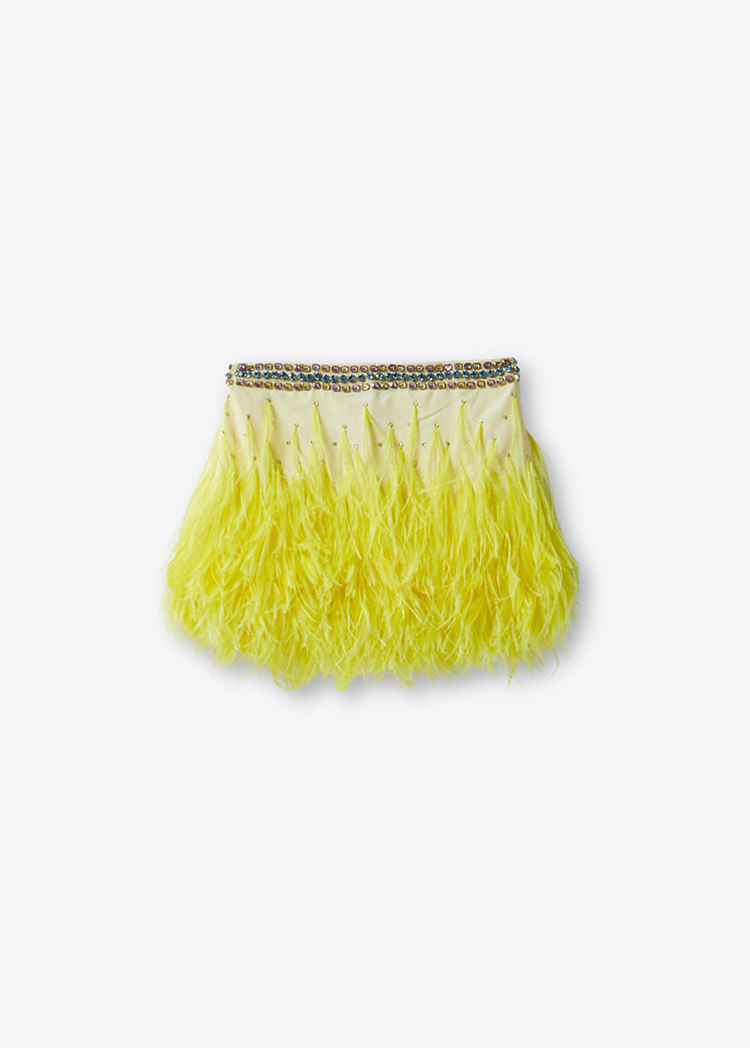 BLUMARINE: SKIRT WITH FEATHERS AND EMBROIDERY RHINESTONES