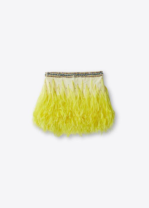 BLUMARINE SKIRT WITH FEATHERS AND EMBROIDERY RHINESTONES